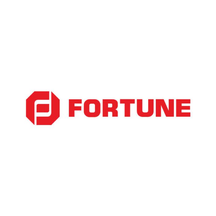Fortune Valve